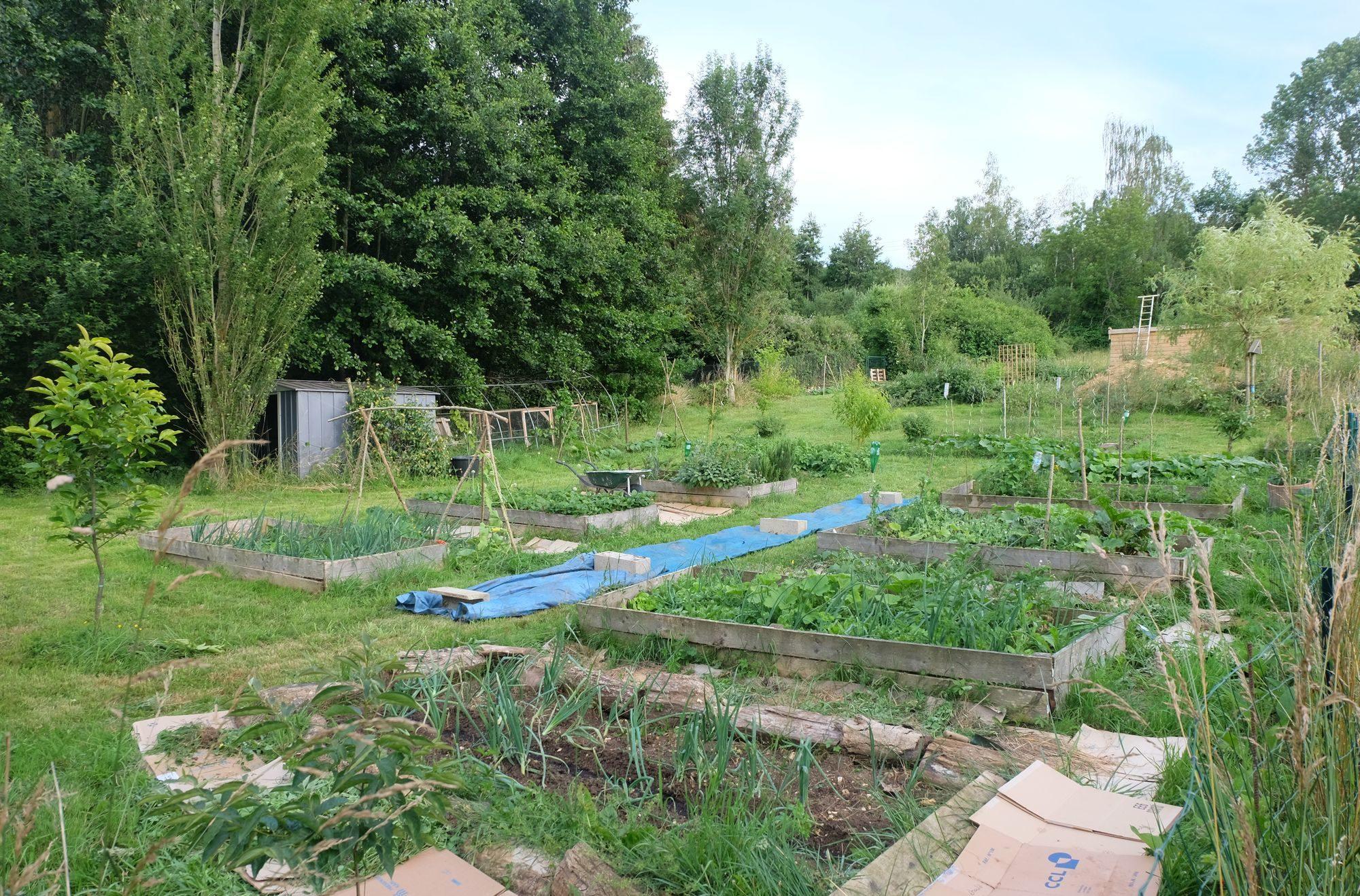 Aménagement Jardin Pas Cher ykarius – un chemin vers l'autonomie